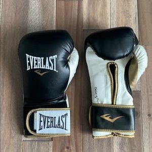 Everlast 16 ounce powerlock training gloves